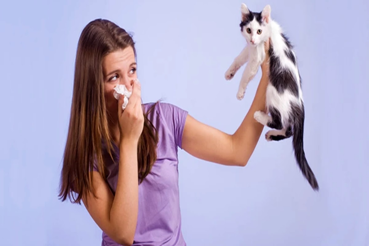 girl with tissue holding cat away from her