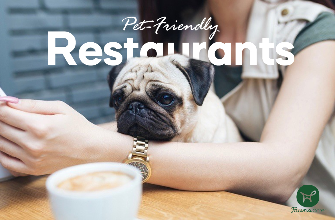 Pet Friendly Restaurants