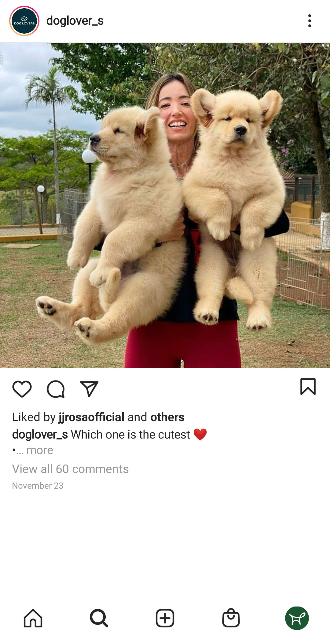 Women holding two puppies