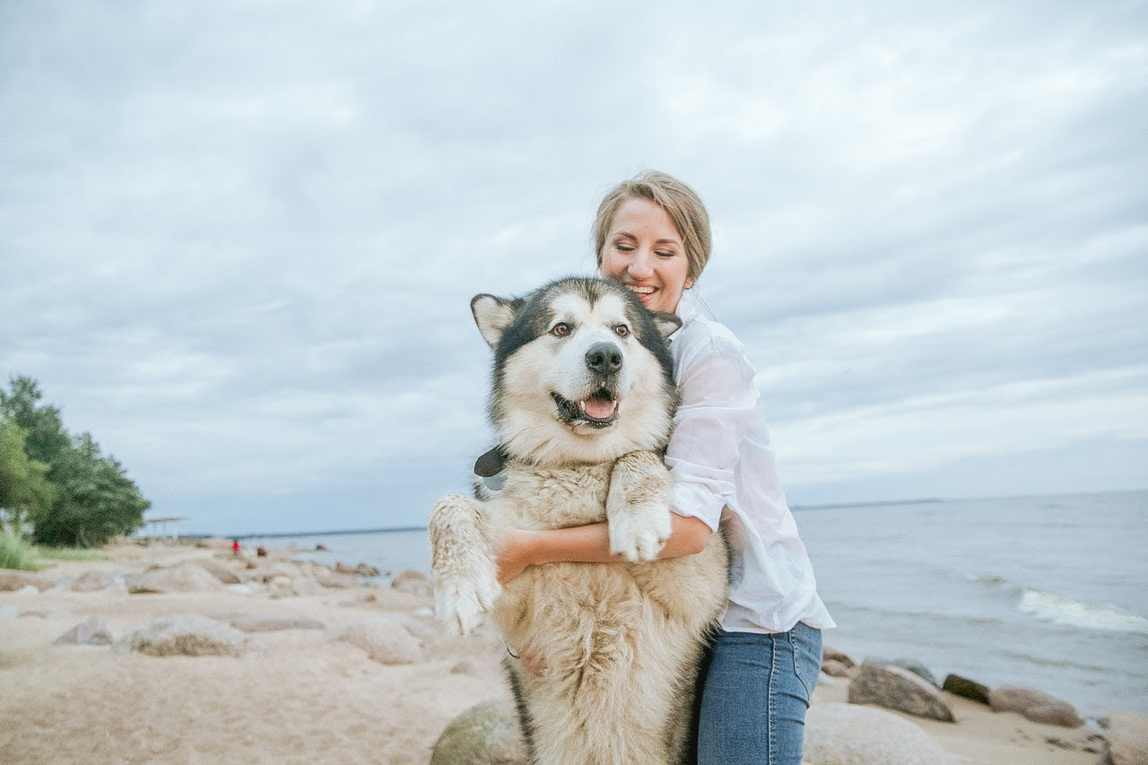 A blonde woman holds up her large husky by his front paws on a beach. She's smiling and the dog is too.