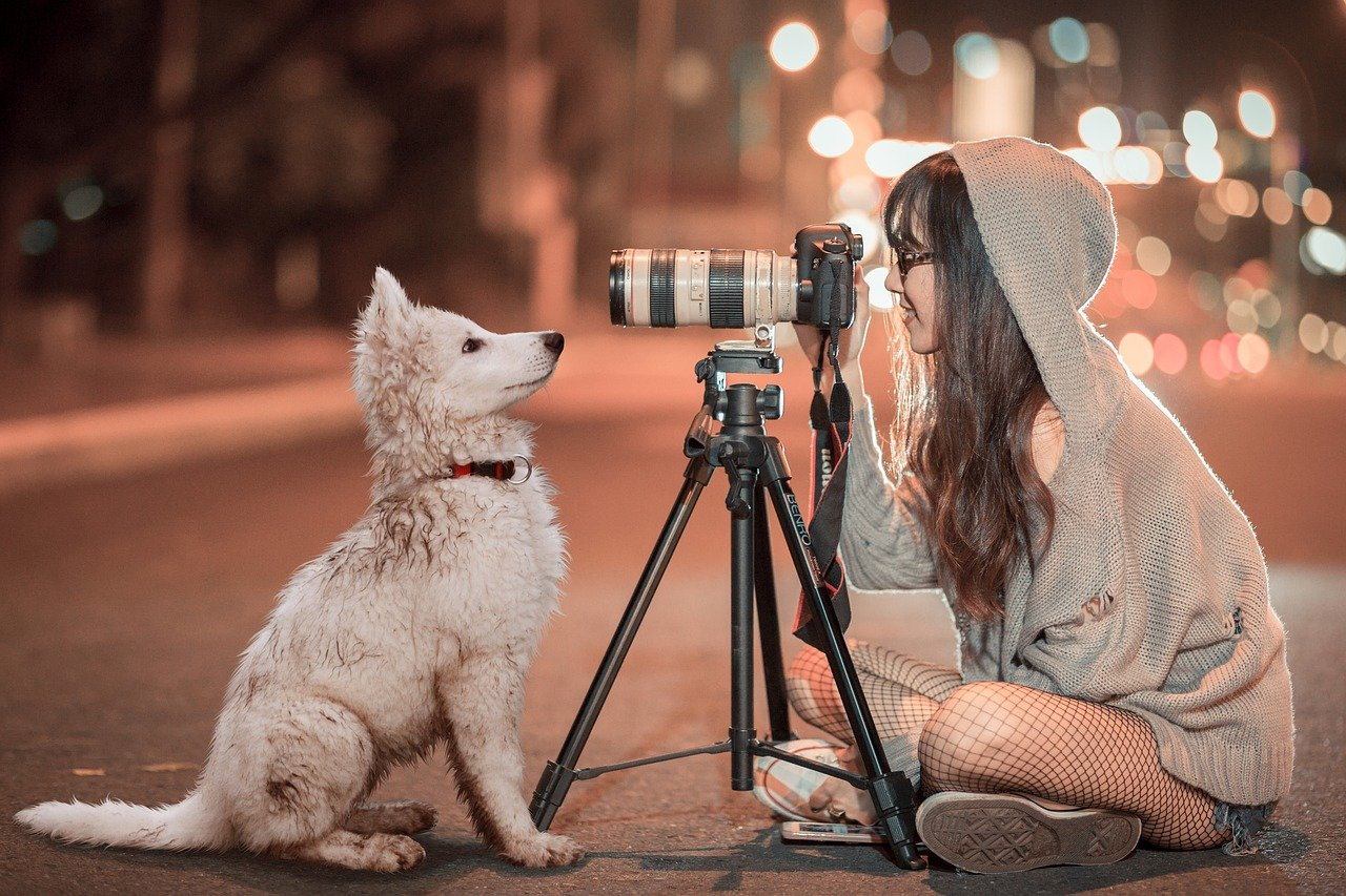 A woman in a hoodie sits cross-legged on in the middle of a street. In front of her is her white puppy that's looking into a camera on a tripod, that she is recording from.
