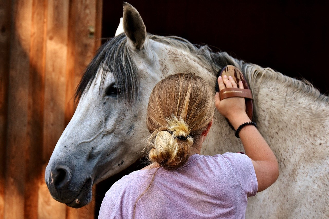 Essential Products To Include In Your Horse's Skincare Routine