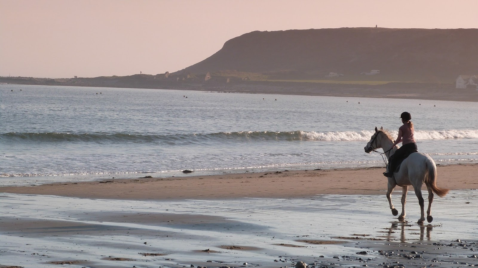 A white horse and rider are at the beach, walking close to the shore.