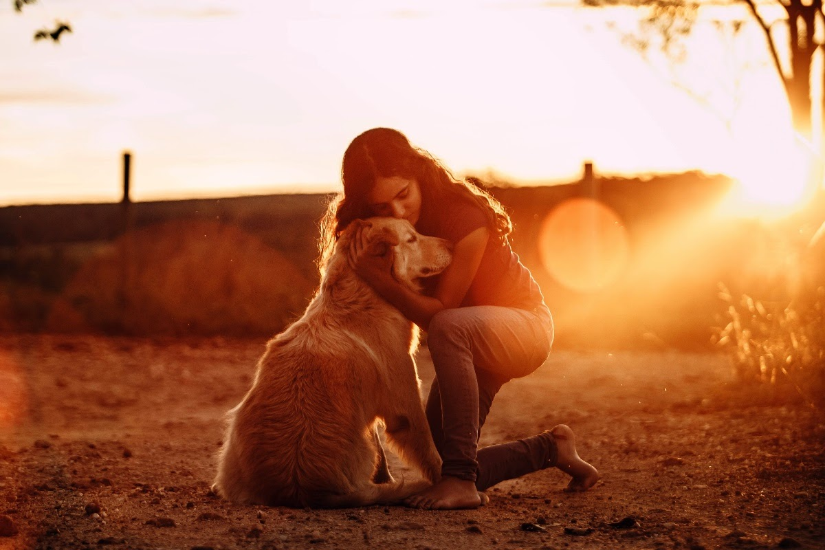 dog and owner hugging at sunset