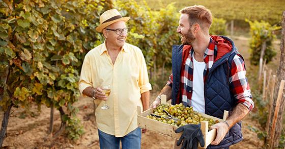 older man and younger man walking in vineyard