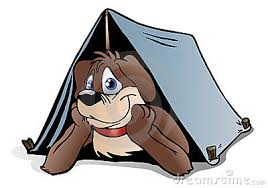Hond op vakantie in tent op Hondencamping La-Soupèze in Frankrijk!