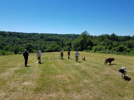 Prachtige omgeving van hondencamping La-Soupèze, vakantie met je hond in Frankrijk!