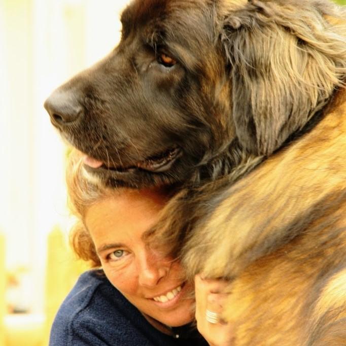 Wie zijn wij van hondencamping La-Soupèze, vakantie met je hond in Frankrijk!