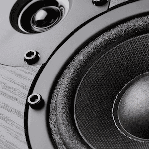view of a speaker woofer and tweeter