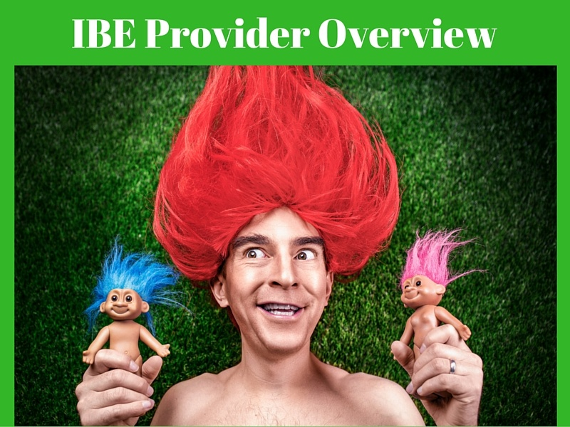 IBE Provider Overview hetras