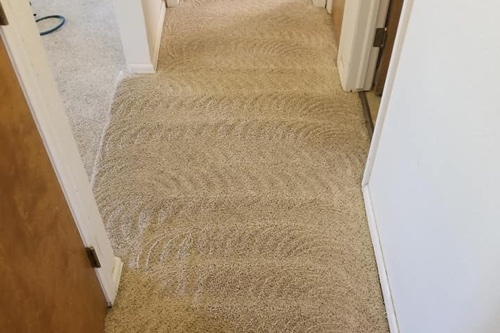 carpet cleaning project in castle rock