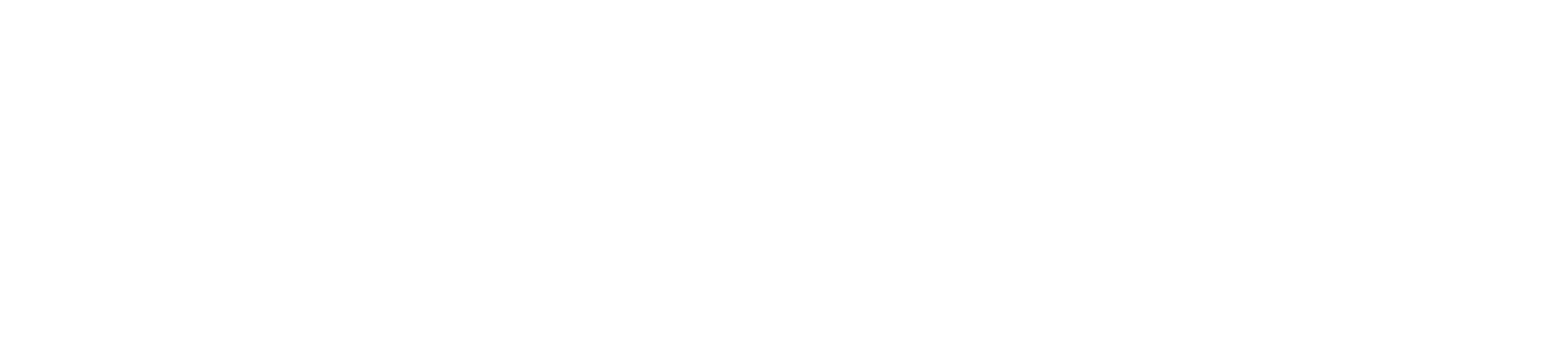 Logo white the surf tribe