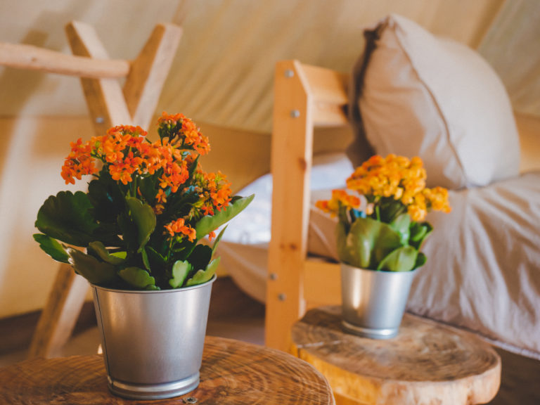 detail inside glamping tent in the nature algarve