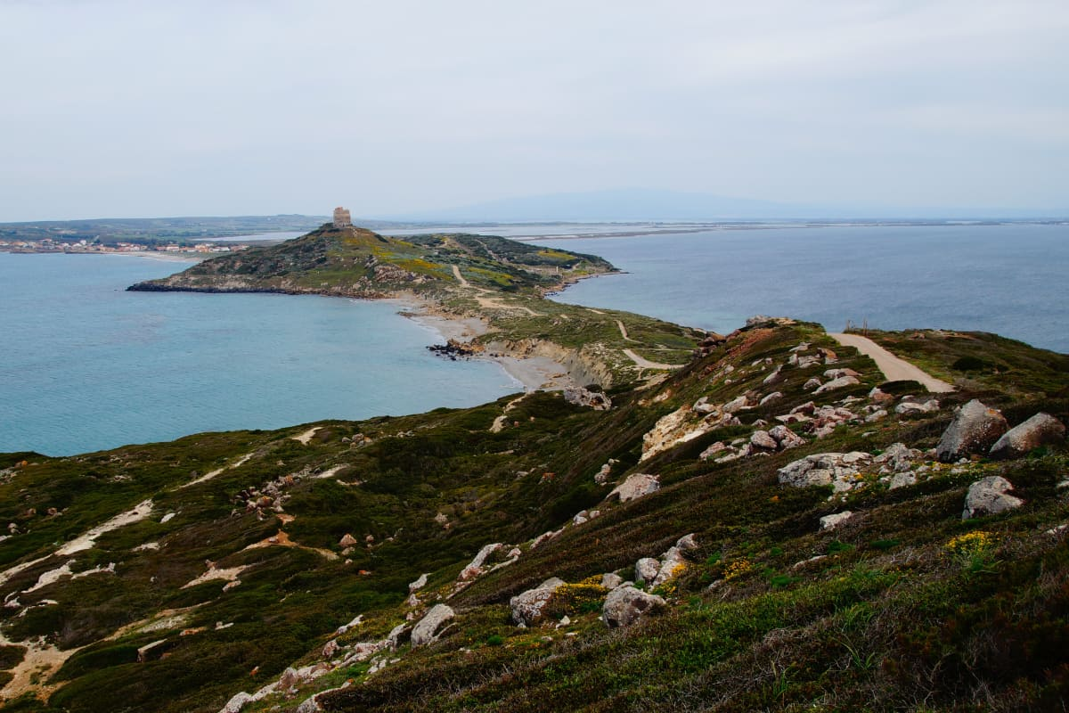 road to the sea in sardinia