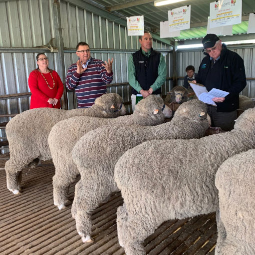 Advocacy for Wool with Richard Halliday