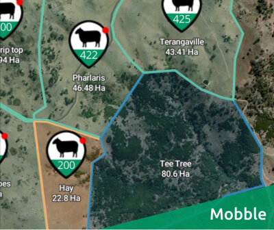Mobble News - An improved farmer experience