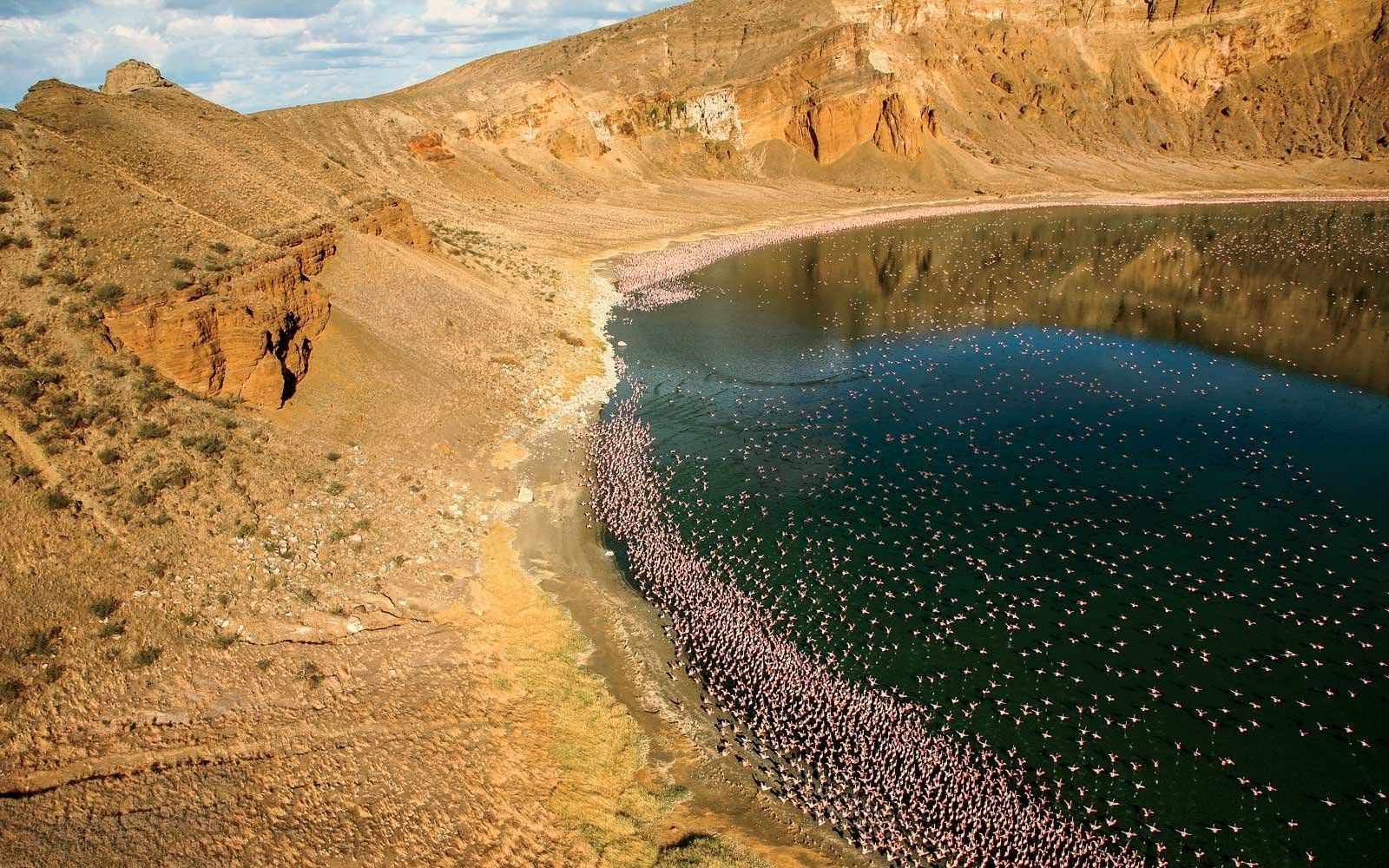 Lake Turkana, a lake inside a crater, with flamingoes