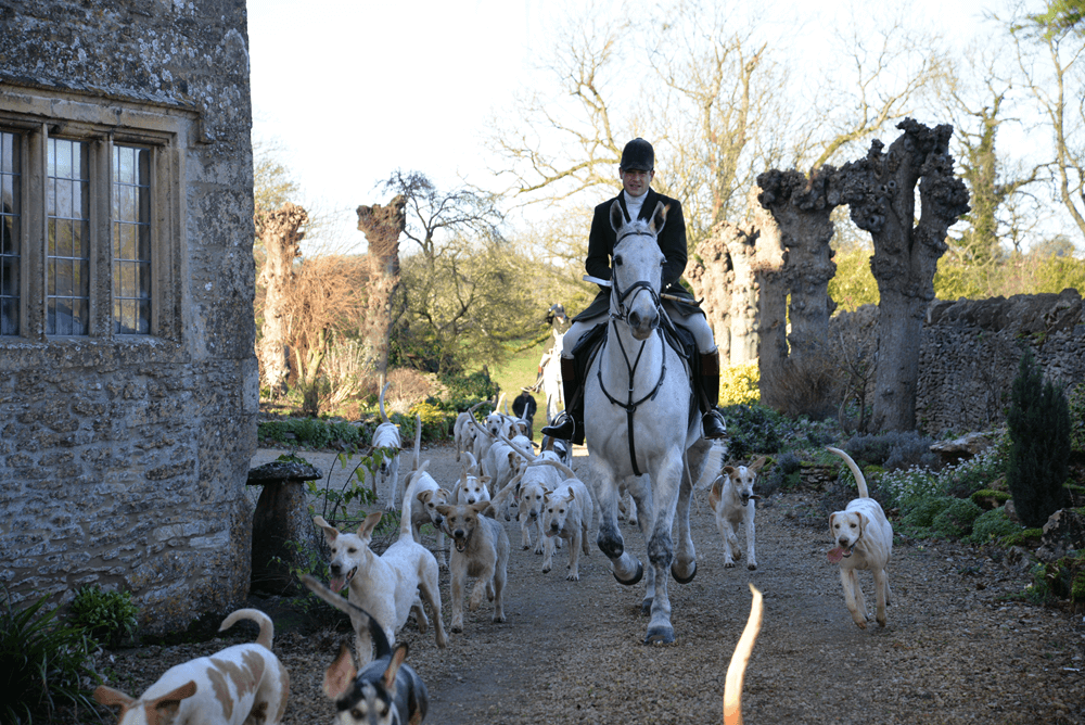 Beaufort Hunt - Shirehill
