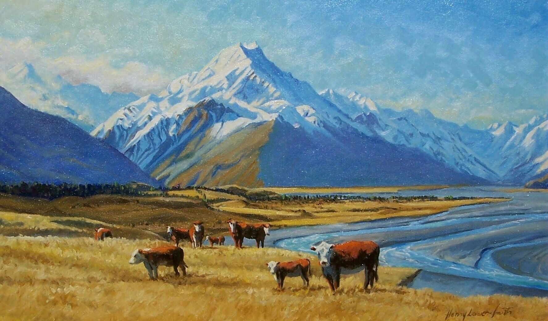 Cook and Cattle
