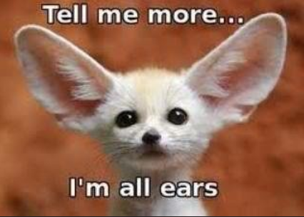 meme of big ears