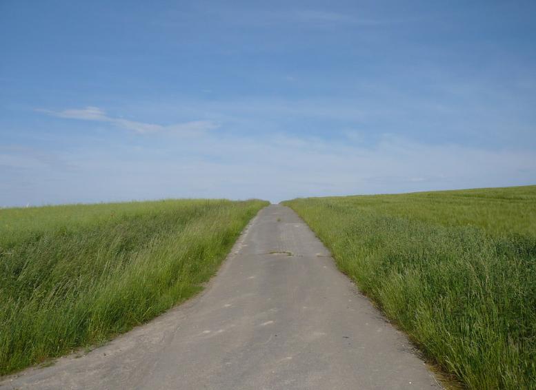 path towards healing anger
