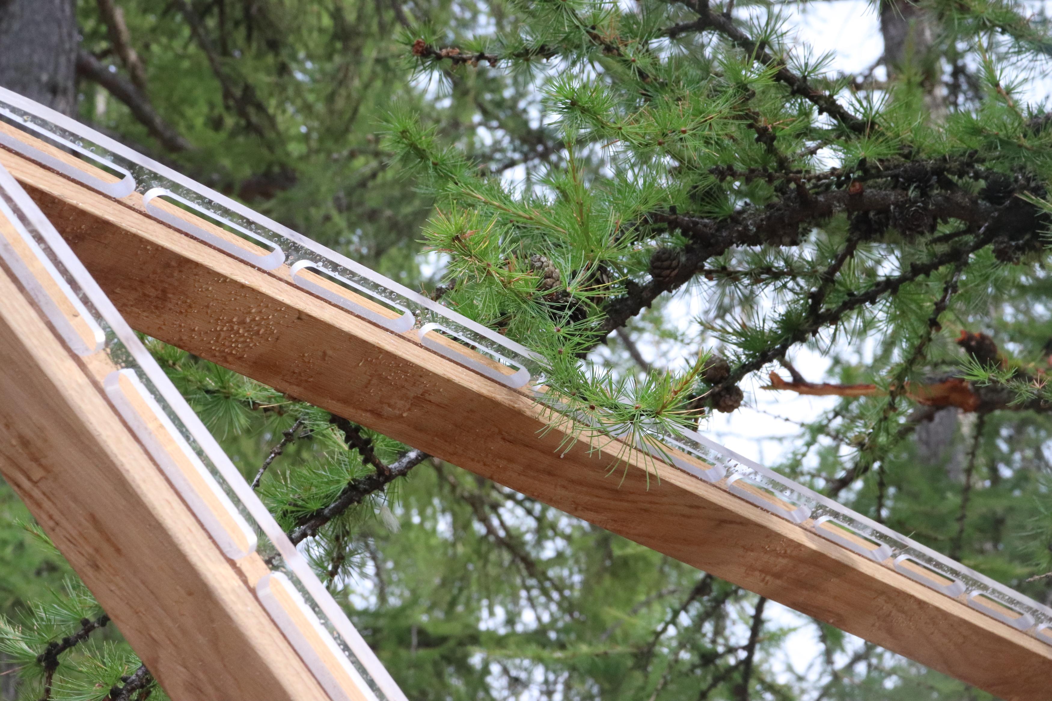 Structures en bois, une alternative durable dans l'événementiel