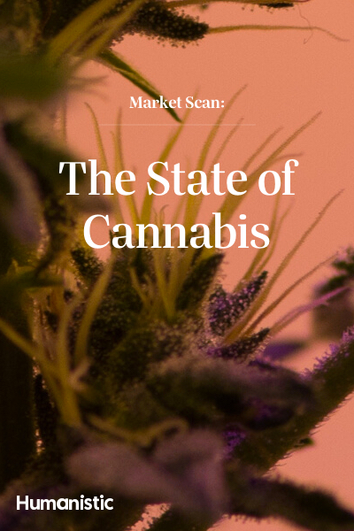 The State of Cannabis Market Scan