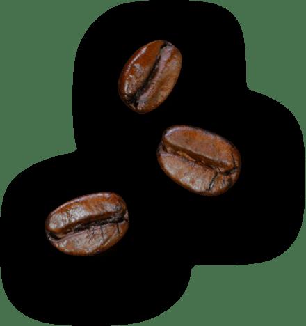 Grain de cafe