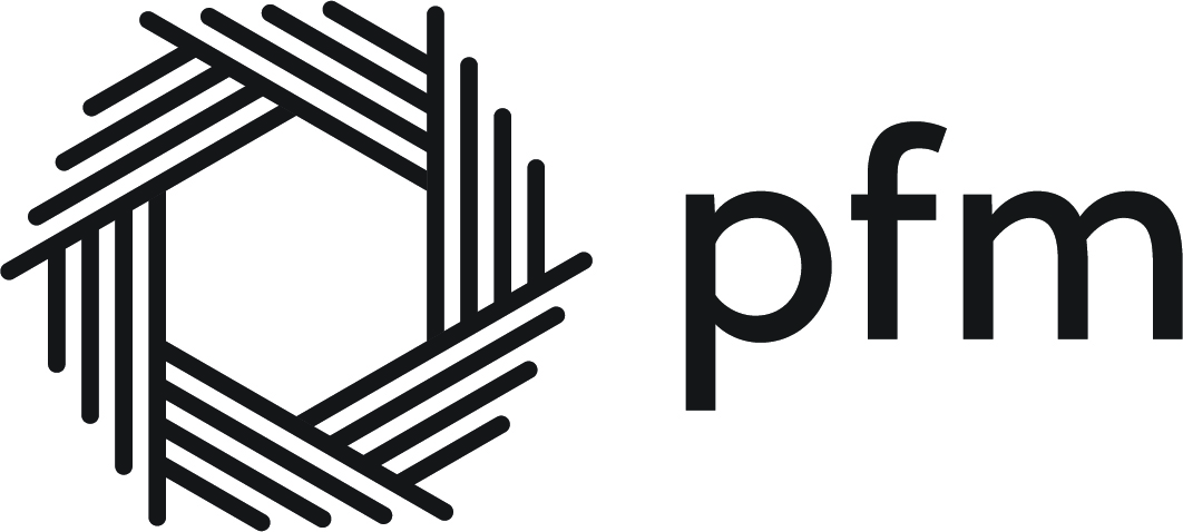 Public Financial Management logo