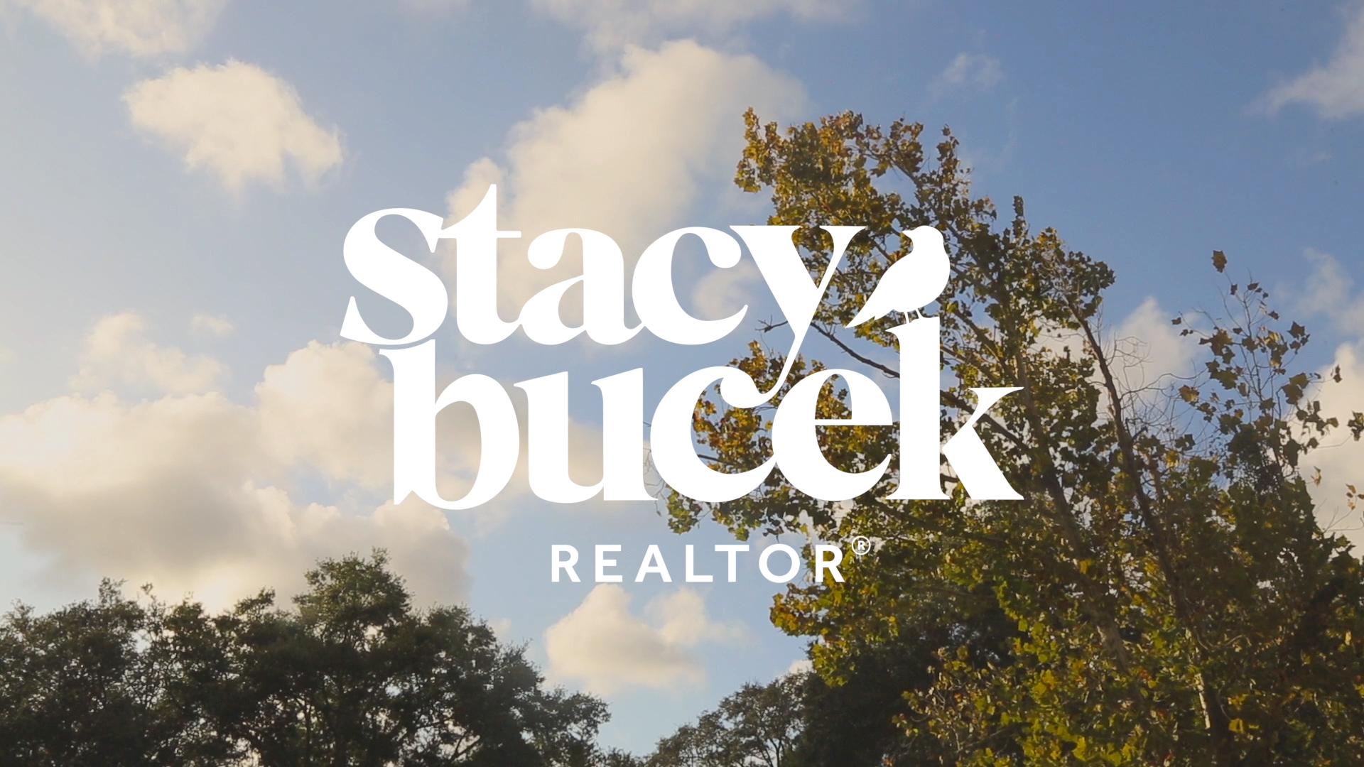 Stacy Bucek Realtor Header