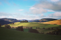 rolling scottish borders hills