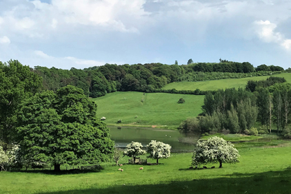 Faldonside | The Lodge Beautiful Views
