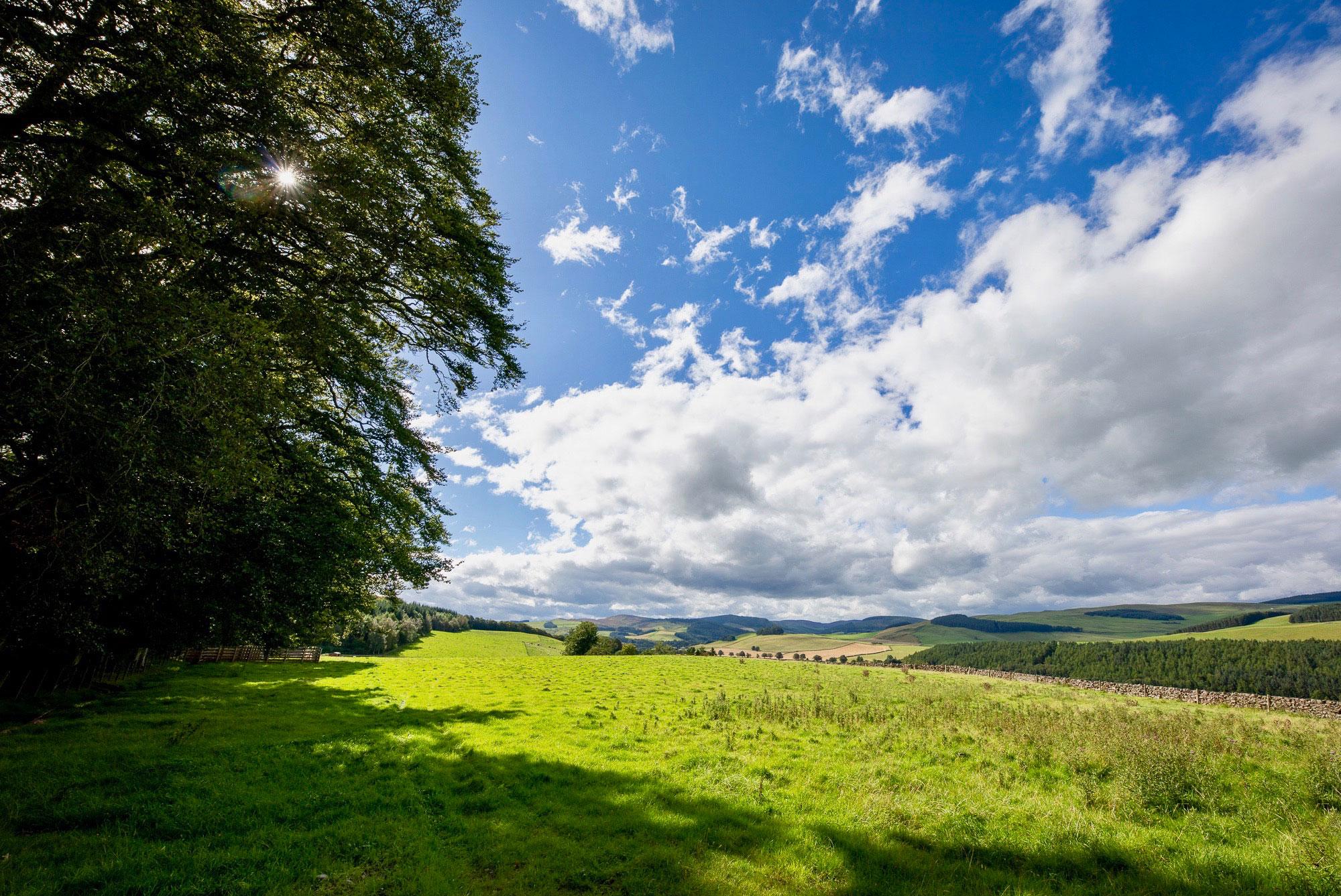 Faldonside | The Studio Open Beautiful Borders Countryside