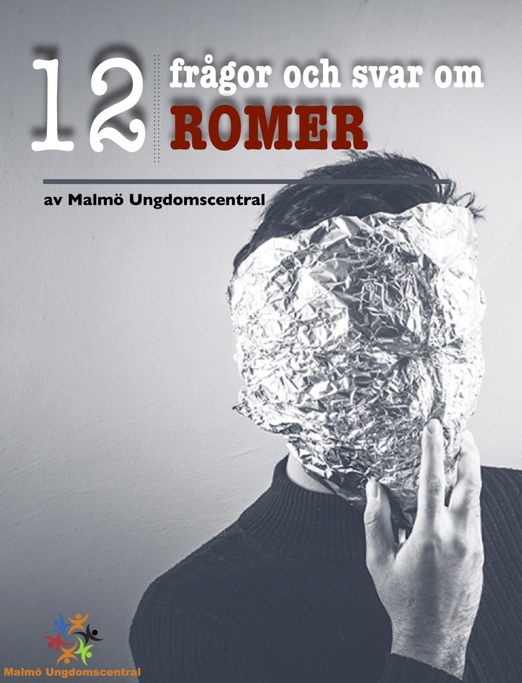 12 frågor och svar om romer