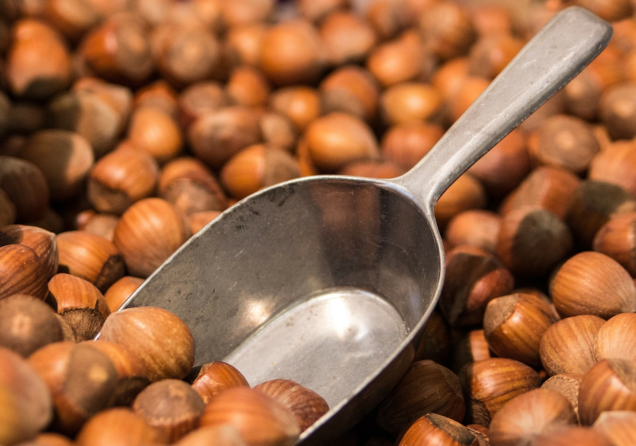 Many hazelnuts with a small shovel jammed into the pile