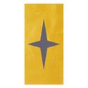 Church capital stewardship campaign star icon raising the star