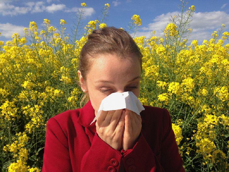Allergien vermeiden und vorbeugen mit dem air-Q
