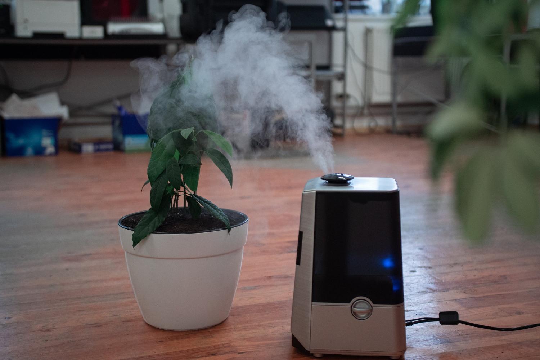 Mindestfeuchte 40 Prozent Luftfechtiigkeit Luftfeuchte