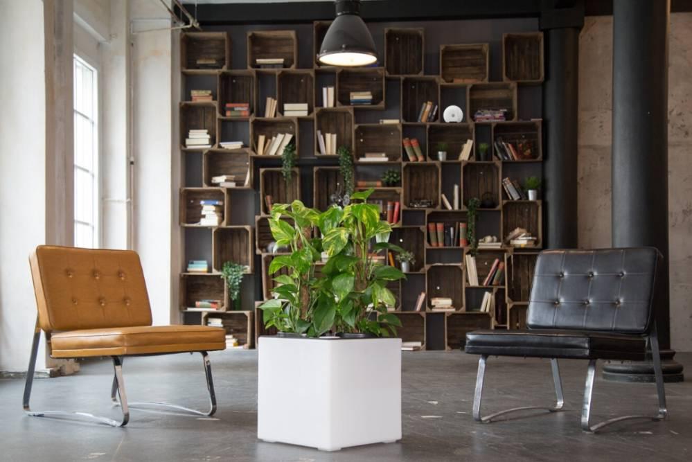 Luftreiniger Florafilt und Luftanalysator air-Q in Lounge mit Bücherregal