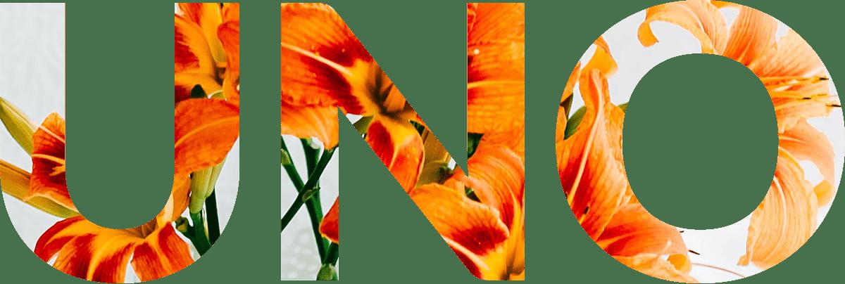 Uno — Webflow HTML website template