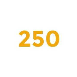 LHWS – Wir betreuuen 250 Mitarbeiter*innen