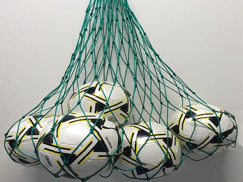 Balltragenetze