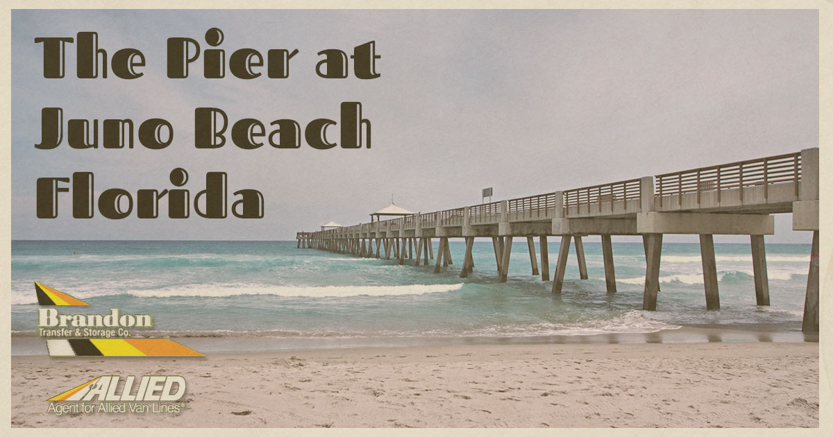 The Pier at Juno Beach Florida vintage postcard from Allied