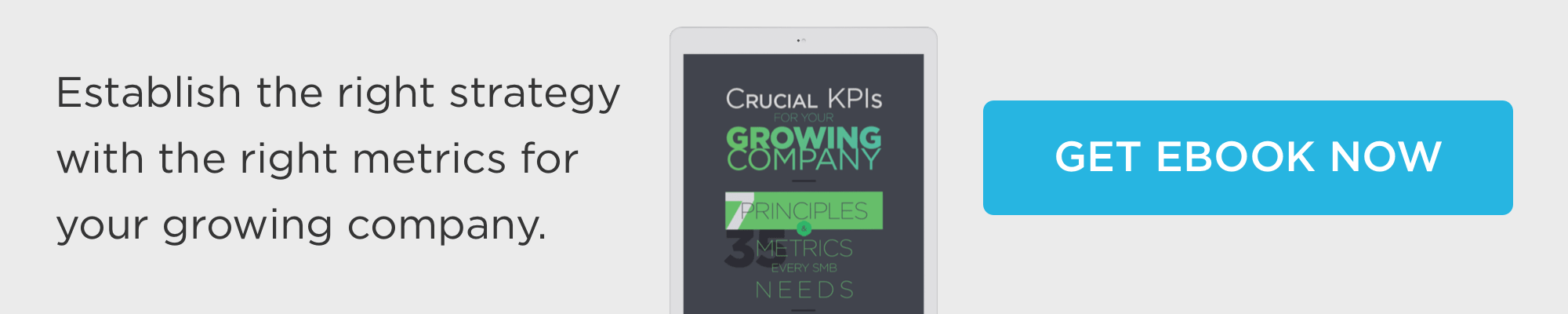 download Crucial KPIs for your growing company