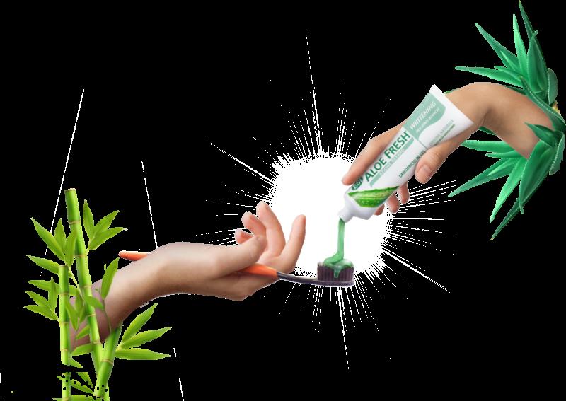 Kaksi kättä ilmassa. Ylempi käsi puristaa Aloe Fresh Whitening hammasgeeliä tuubista, alempi käsi pitelee bamboo nano hammasharjaa, jonka harjaksiin geeli kerääntyy kasaksi.