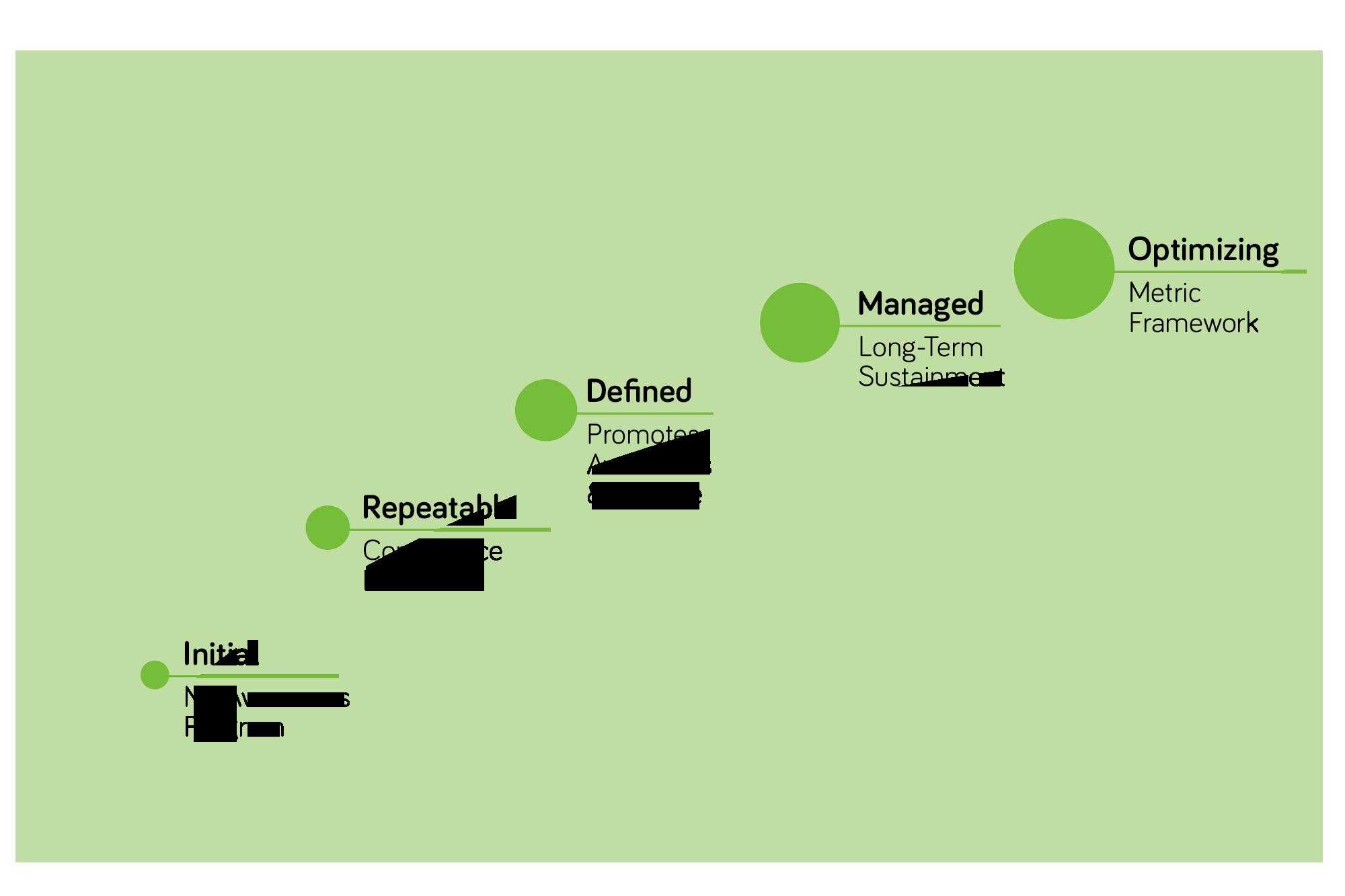 Capability maturity model (CMM) of security culture