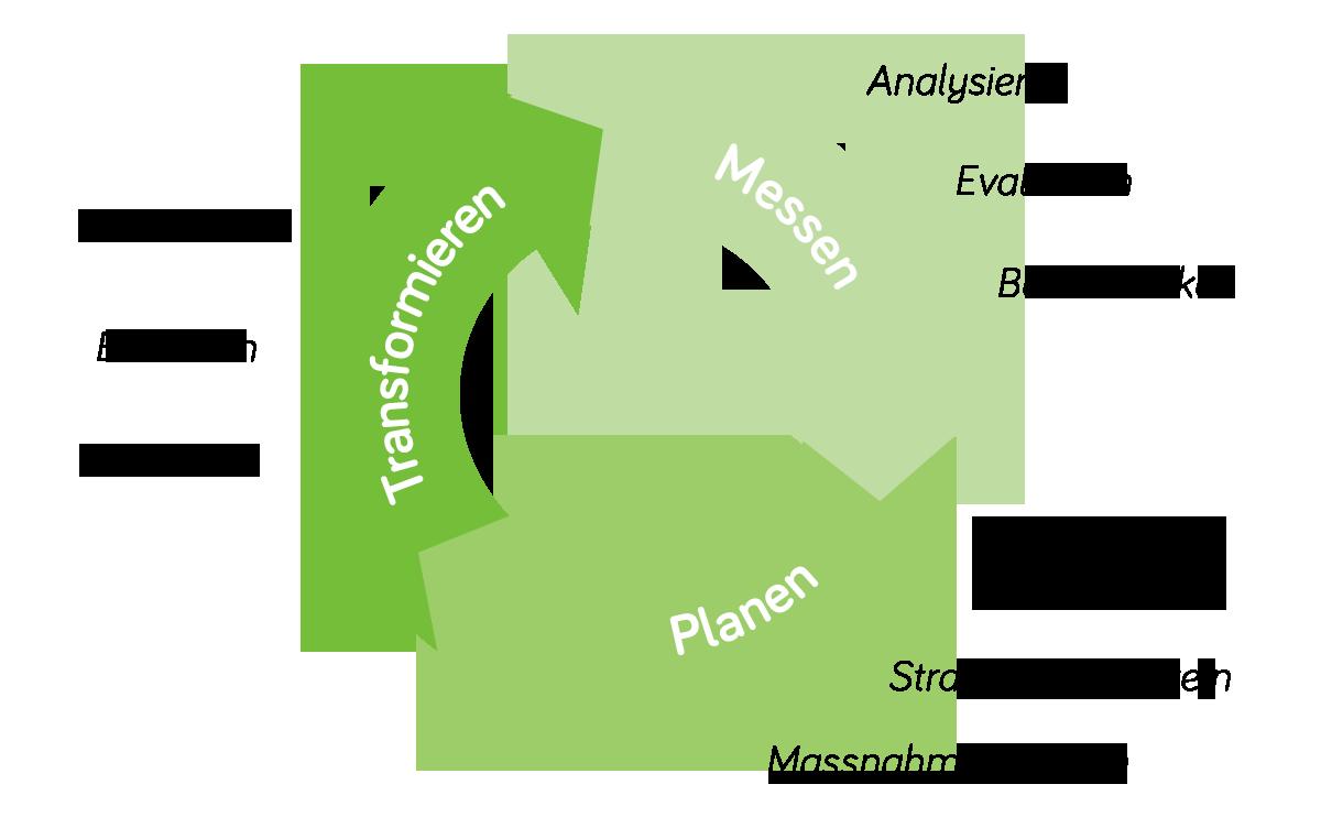 TreeSolutions Sicherheitskultur-Management-Prozess