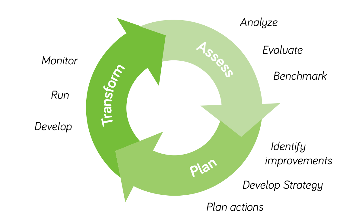 TreeSolution's security culture management process