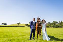Alcott Farm Wedding - Helen & Joe