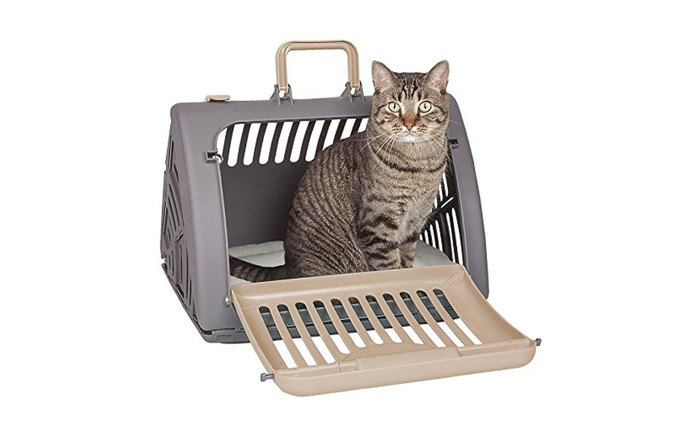 SportPet Designs Foldable Travel Carrier